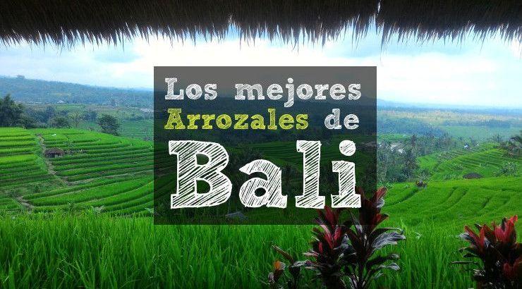 Los mejores arrozales de Bali