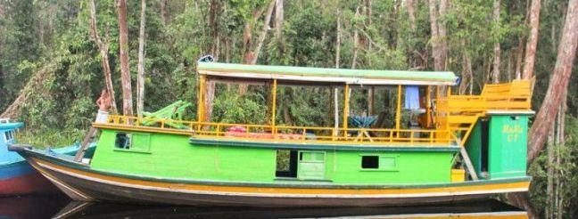 Barco Klotok para el Tour en Borneo
