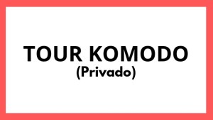 Tour Komodo Privado