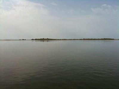 Punta de la Banya - Delta del Ebro