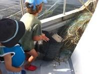 A punto para llenar el cesto de peces