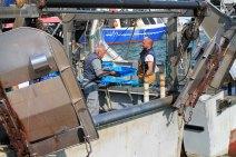 pescadores-barcos-sant-carles-rapita