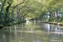 Una bóveda verde acompaña en partes del recorrido del Canal du Midi