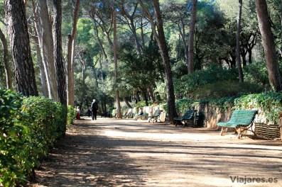 El parque presenta una extensa zona semiboscosa y jardines