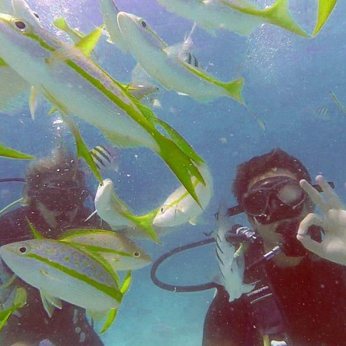 Buceando con peces en Cayo Guillermo