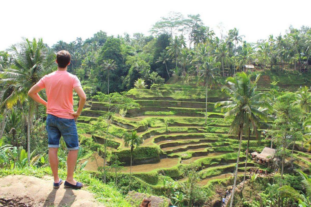 Las vistas de las terrazas de arroz de Tegallaland en Ubud