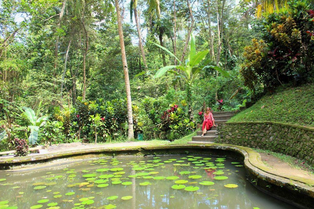 Precioso estanque en los jardines de Goa Gajah
