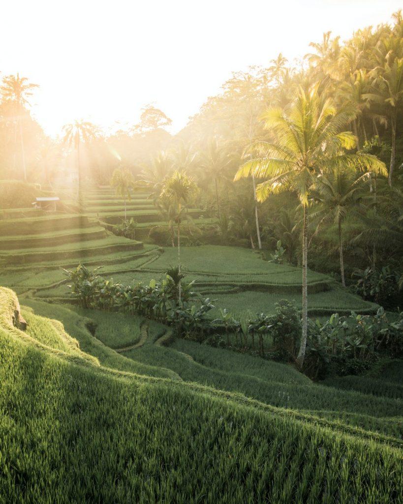Las vistas que pudimos disfrutar durante nuestro viaje a Bali por zonas