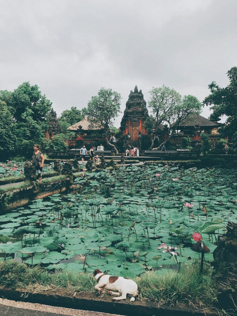 En el Pura Taman Saraswati, Ubud