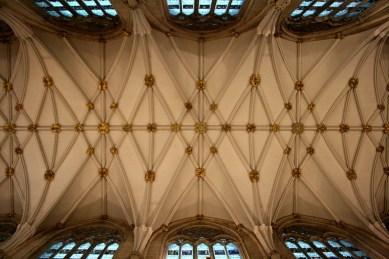 Catedral de York 16