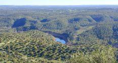 Dehesa del parque nacional de Monfragüe