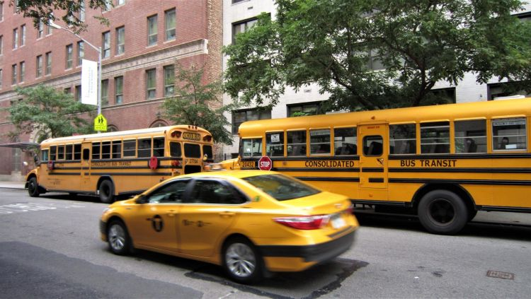 Taxi de NY y autobuses escolares
