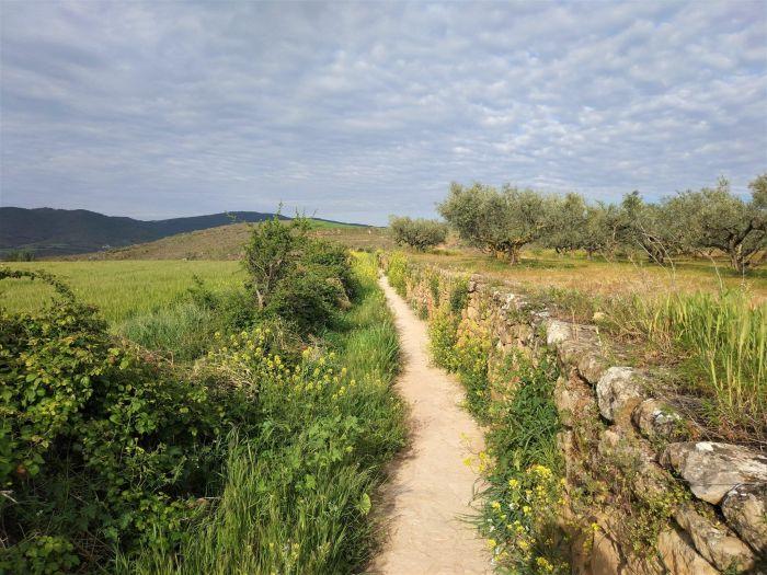 camino muralla