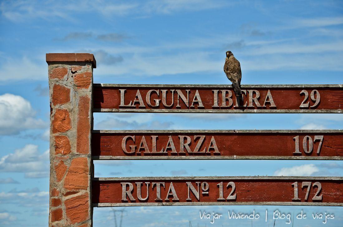 ave camino - viajar a los Esteros del Iberá