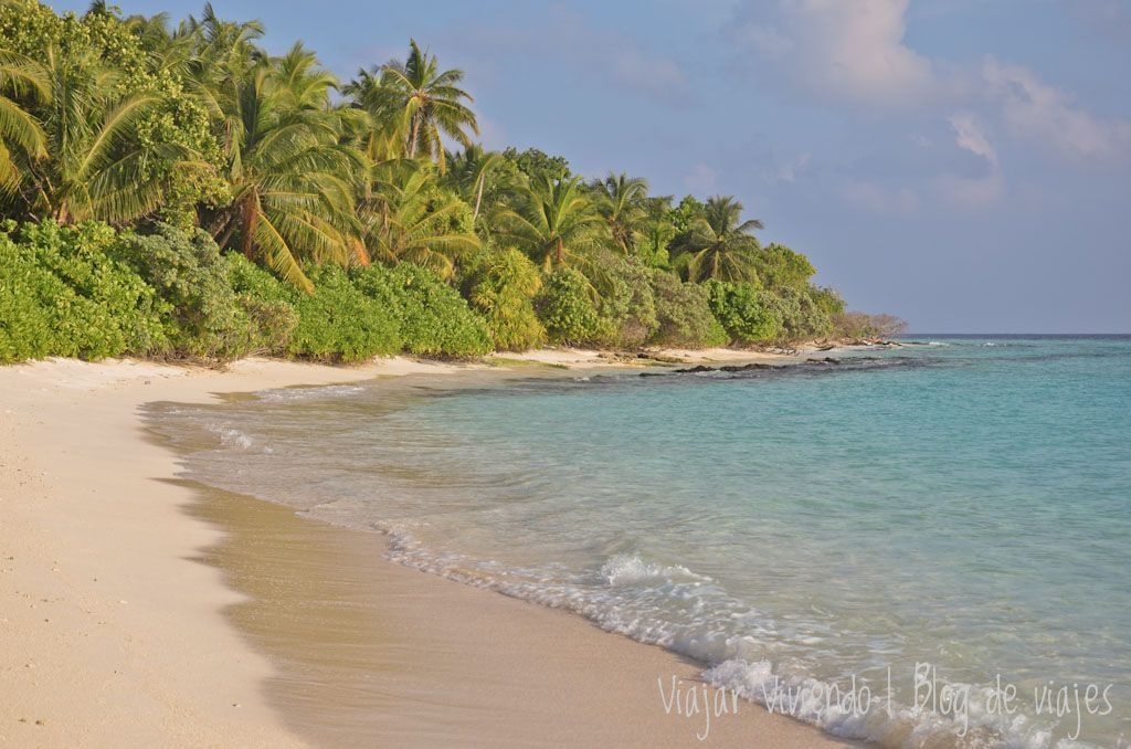 visado maldivas gratis on arrival - visa para viajar a India, Nepal y Maldivas