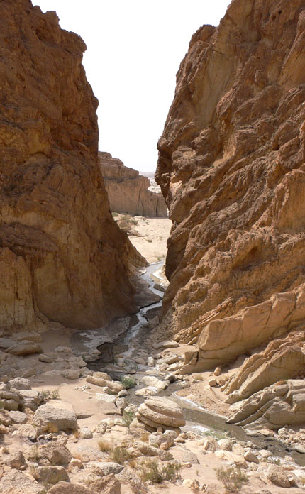 Gorges de Seldja, Túnez