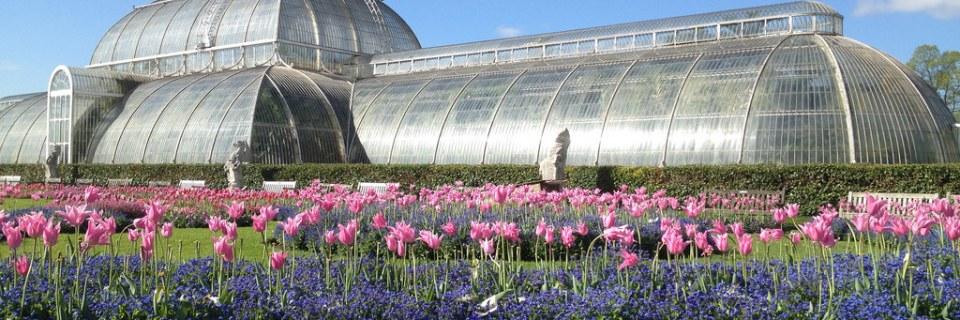 Real Jardín Botánico de Kew