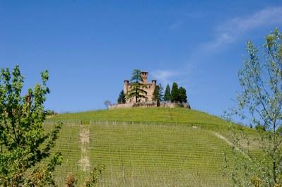 Castillo de Grinzane Cavour, rodeado de viñedos