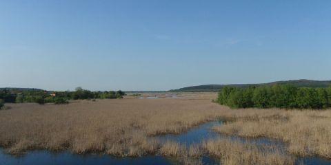 Reserva natural de Srebarna