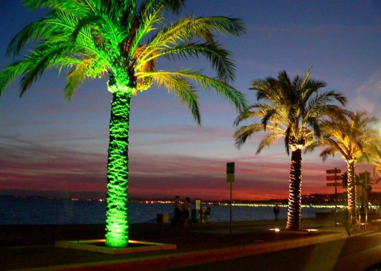 Atardecer Cannes Francia