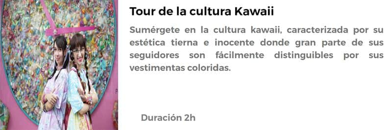 Tour de la cultura Kawaii