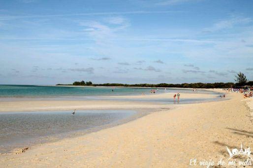 Playa Cayo Coco Cuba
