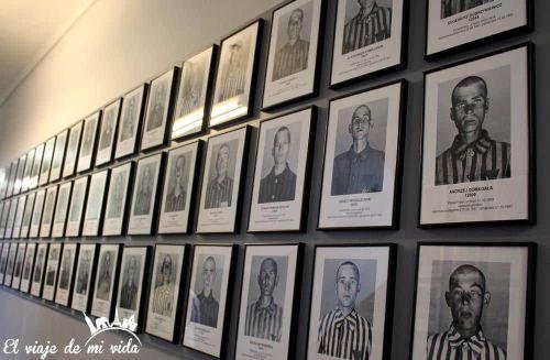 Retratos de Auschwitz, Polonia