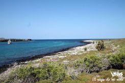 La isla Plazas Sur