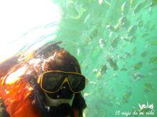 Snorkel por Koh Phi Phi