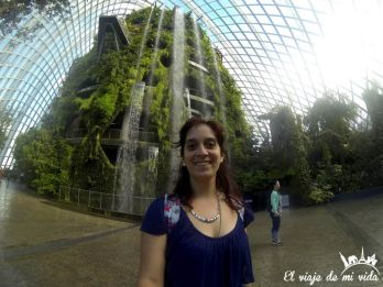 Gardens by the Bay de Singapur