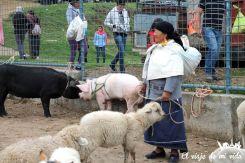 Señora intentando vender su oveja