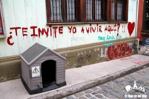 Las casitas para perros abandonados en Chile
