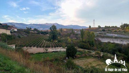 Los viñedos de Elciego