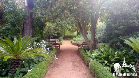 Los jardines de Bodega de Marqués de Risca