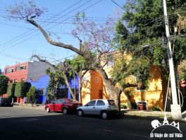 Barrio de Coyoacán