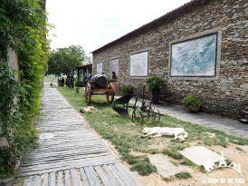 Quinta da Avessada