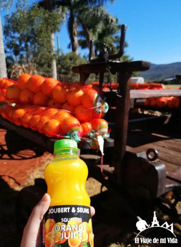 Naranjas de Mpumalanga