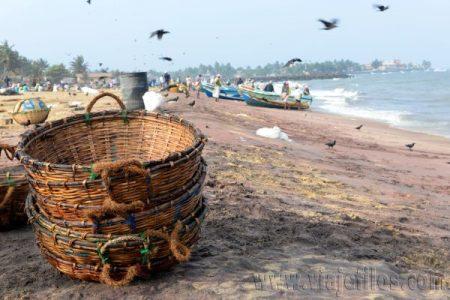01 Viajefilos en Sri Lanka. Negombo 18