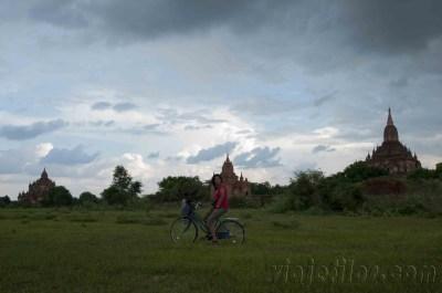 Bagan 41