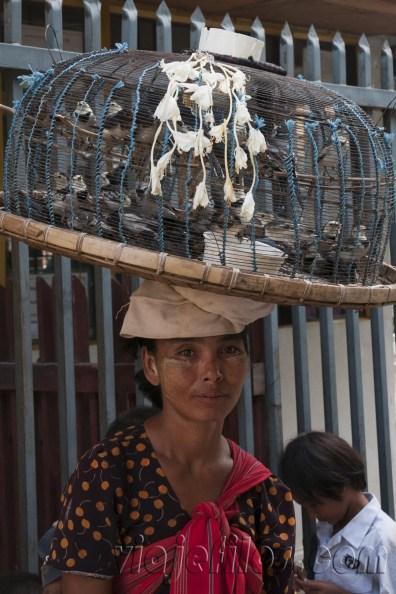 Sonrisas de Myanmar 50
