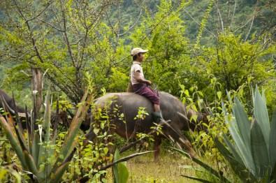 Trekking Kalaw-Inle 19