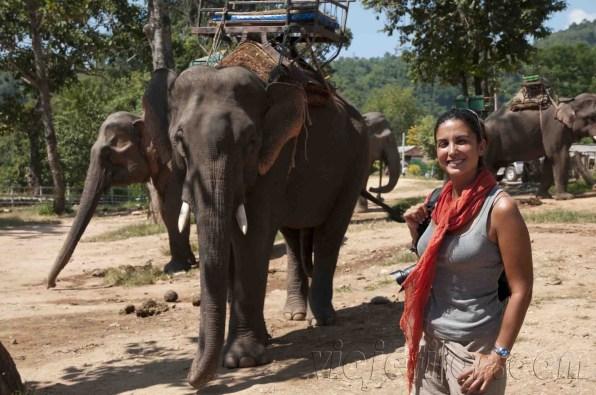 05 Trekking Chiang Rai 14