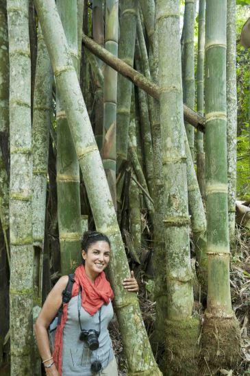 05 Trekking Chiang Rai 20