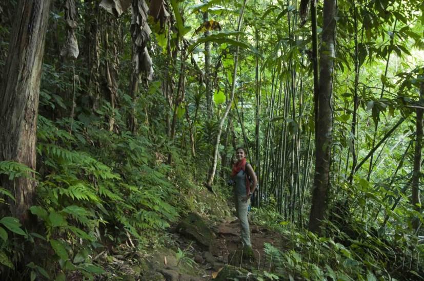 05 Trekking Chiang Rai 22