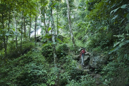 05 Trekking Chiang Rai 26