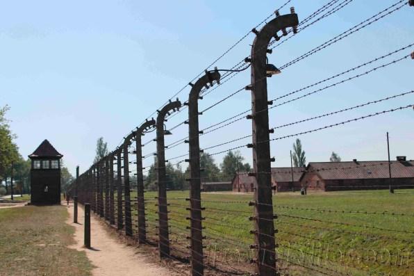 Auschwitz-008-copia