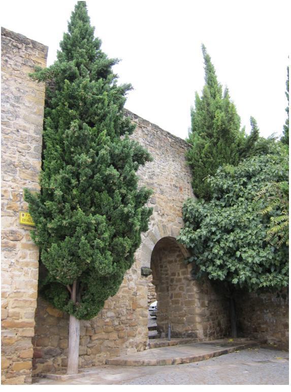 Puerta de Granada 1