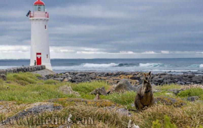 Isla de Griffiths en la Great Ocean Road de Australia