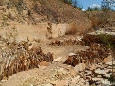 Geossítio Pedra Cariri - Chapada do Araripe - Nova Olinda - Ceará