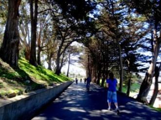 Passeio de Bicicleta em San Francisco
